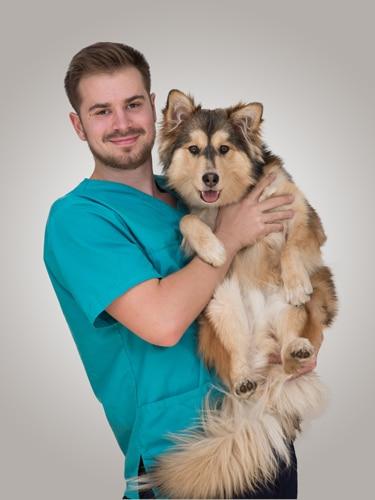 Axel assistant veterinaire lyon 8 eme Mermoz Vet