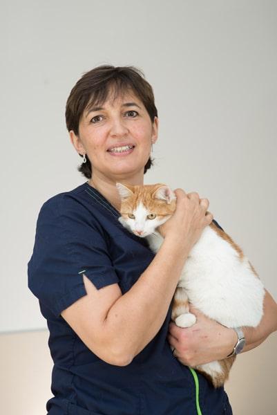 Veterinaire de garde lyon 8 eme Isabelle Guibout Chovet