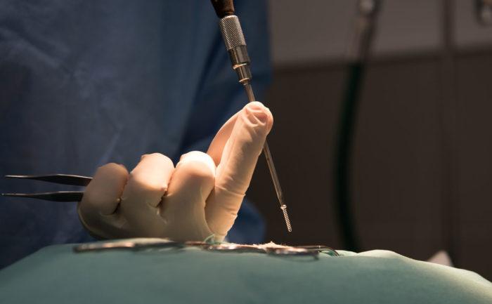 veterinaire lyon mermoz chirurgie orthopédique