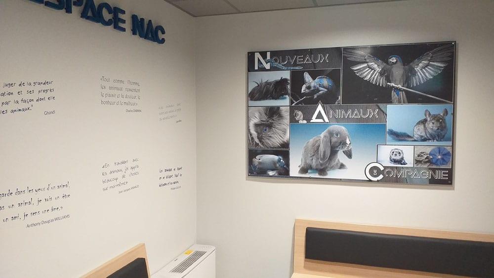 Veterinaire NAC Salle d'attente